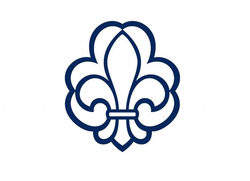 logo til DDS
